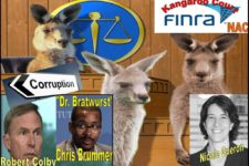 FINRA NAC, NATIONAL ADJUDICATORY COUNCIL KANGAROO COURT, RUBBER STAMP